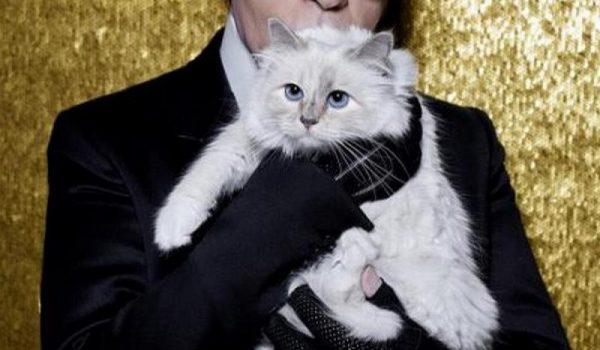 """Naslijedila milione Mačka Karla Lagerfelda se """"oglasila"""" na Instagramu: Srce mi je slomljeno"""