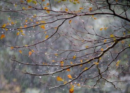 Stigla je jesen, narednih dana hladnije uz lokalne pljuskove praćene grmljavinom