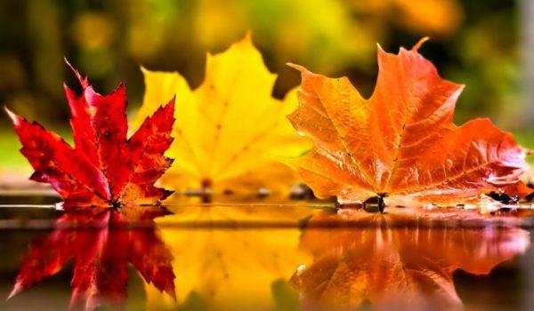 Iza nas je još jedno ljeto: Danas je prvi dan jeseni, evo i kakvo nas vrijeme očekuje