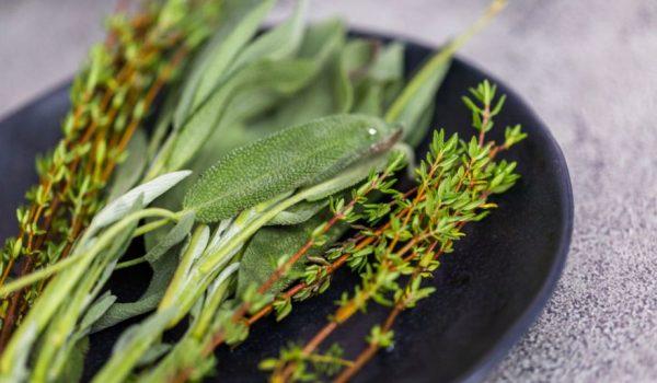 Smesa od OVE biljke štiti od zračenja mobilnog telefona